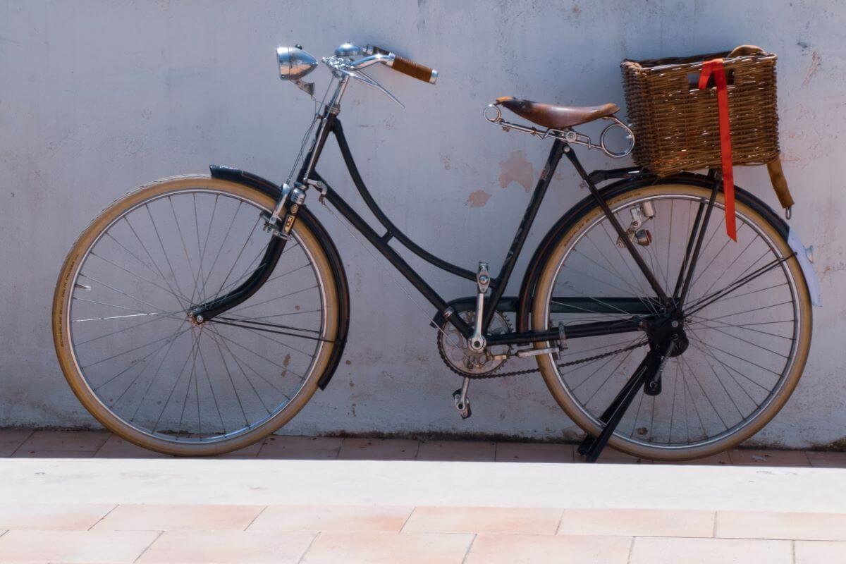 best rear bike baskets