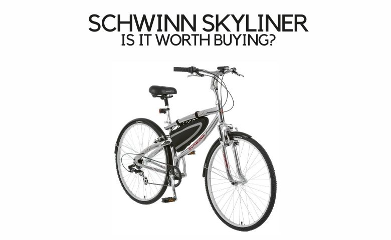 Schwinn Skyliner review